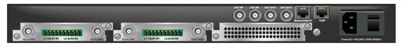 SMP-100 - вид задней панели, пример